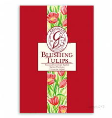 Greenleaf & Bridgwater BLUSHING TULIPS  Large Scented Envelope Sachet